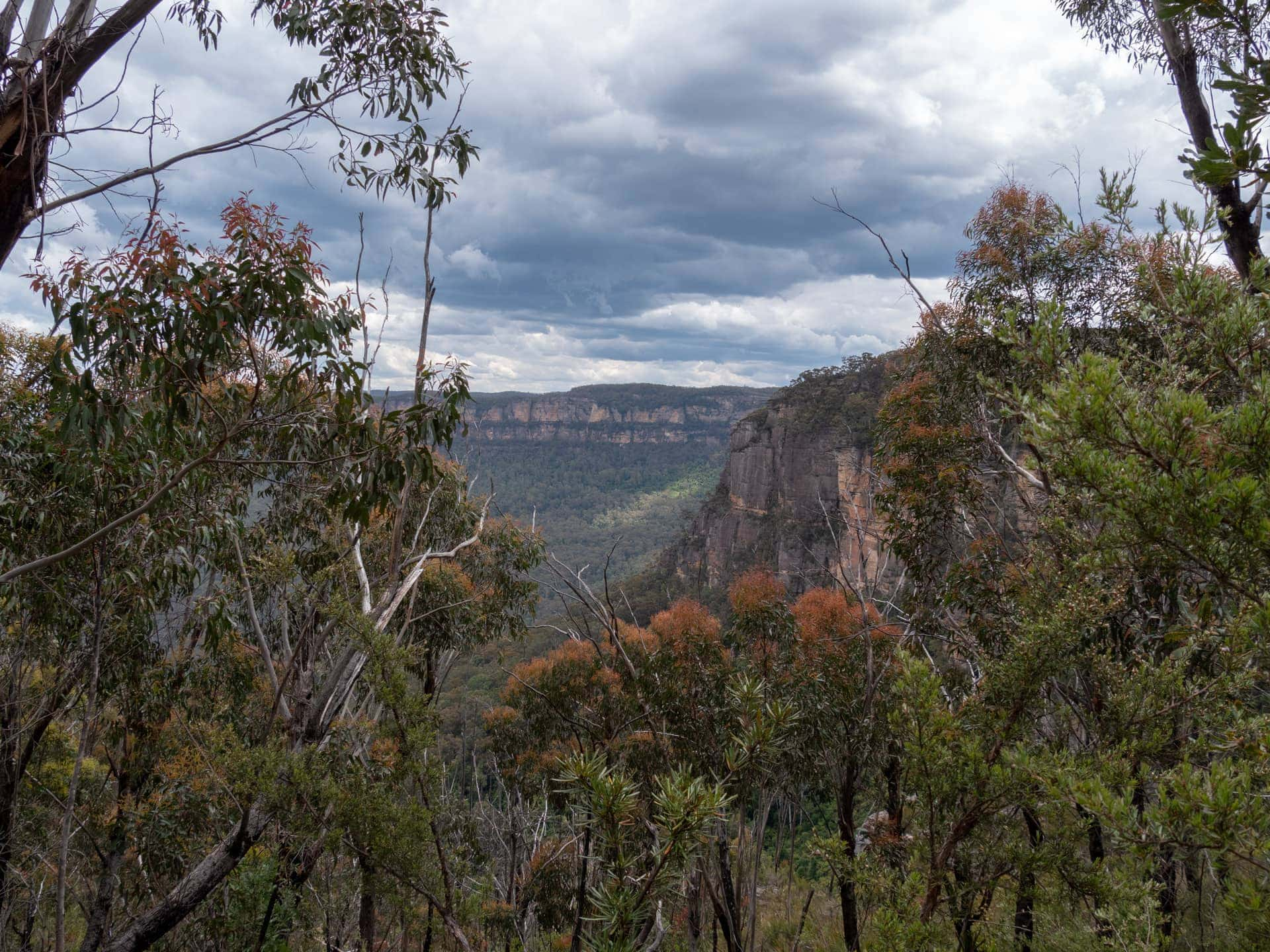 Les Blue Mountains, à 2h de Sydney en voiture ou train 34