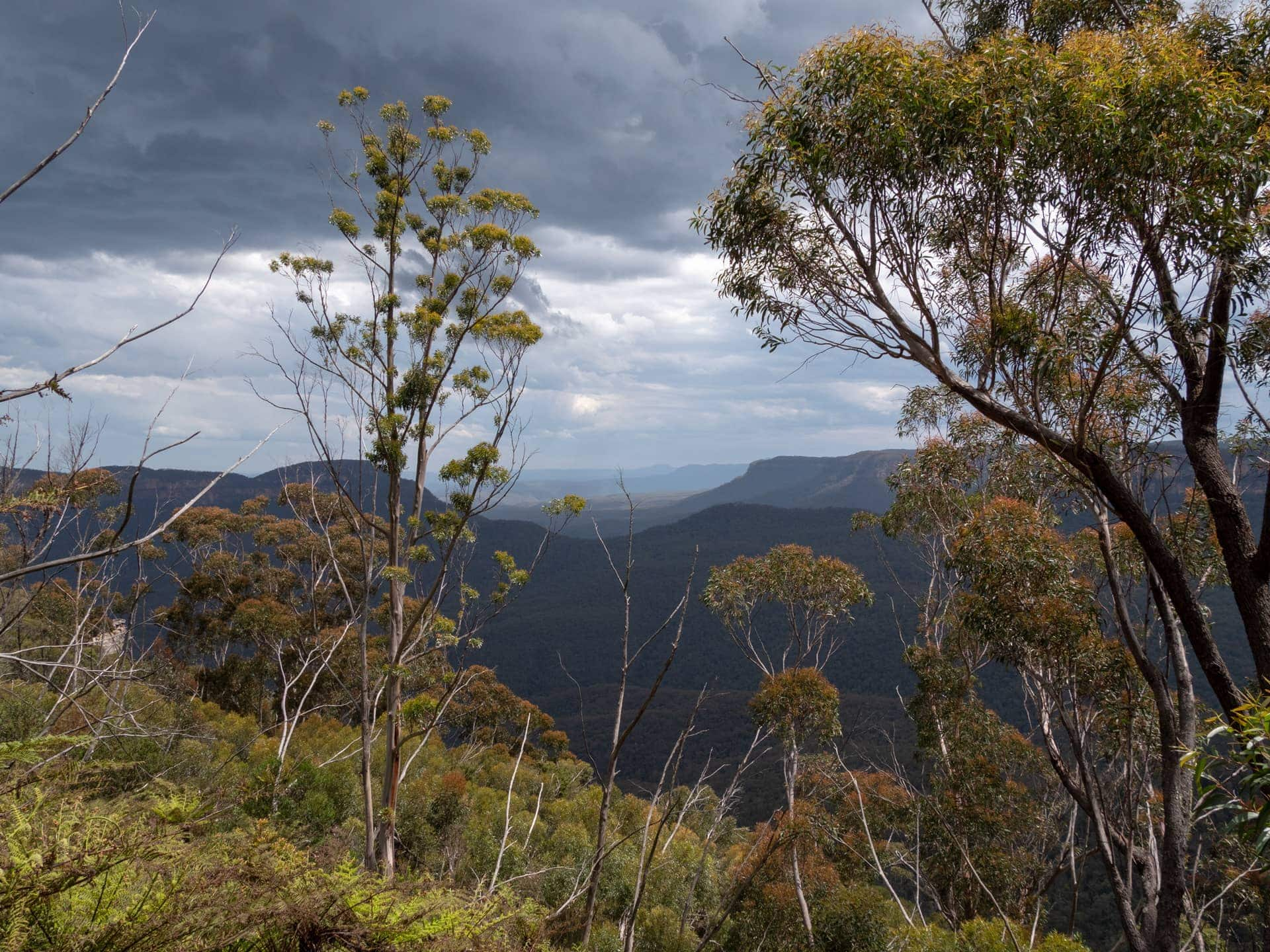 Les Blue Mountains, à 2h de Sydney en voiture ou train 35