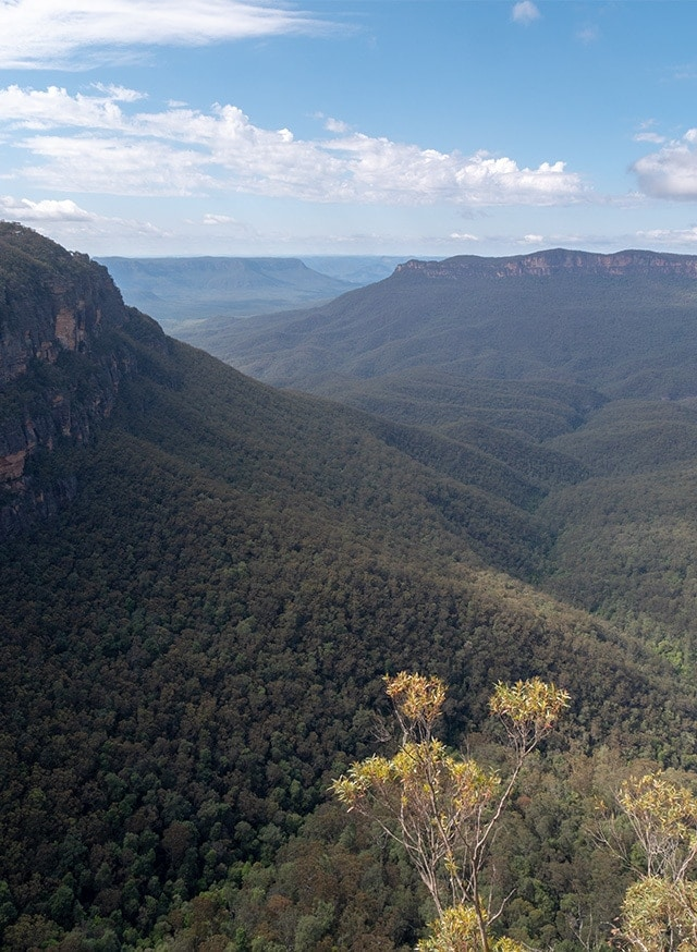 Les Blue Mountains, à 2h de Sydney en voiture ou train 57