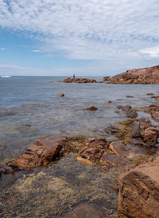 Port Stephens, péninsule montagneuse et tropicale à 2h30 au nord de Sydney 7