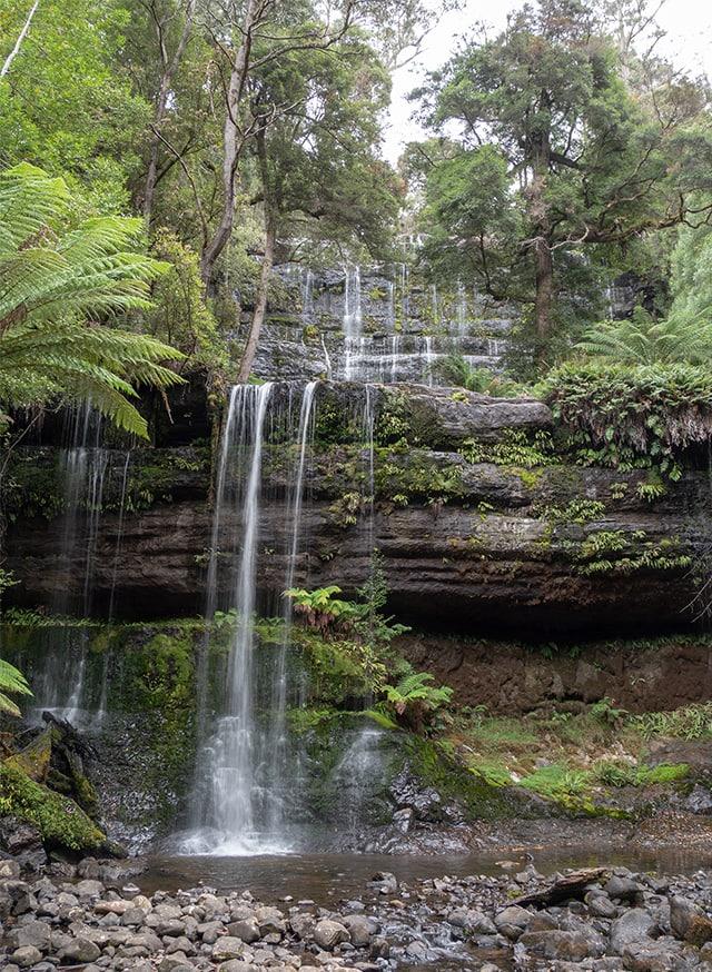 Les cascades et géants gum tree de Mt Field National Park 2